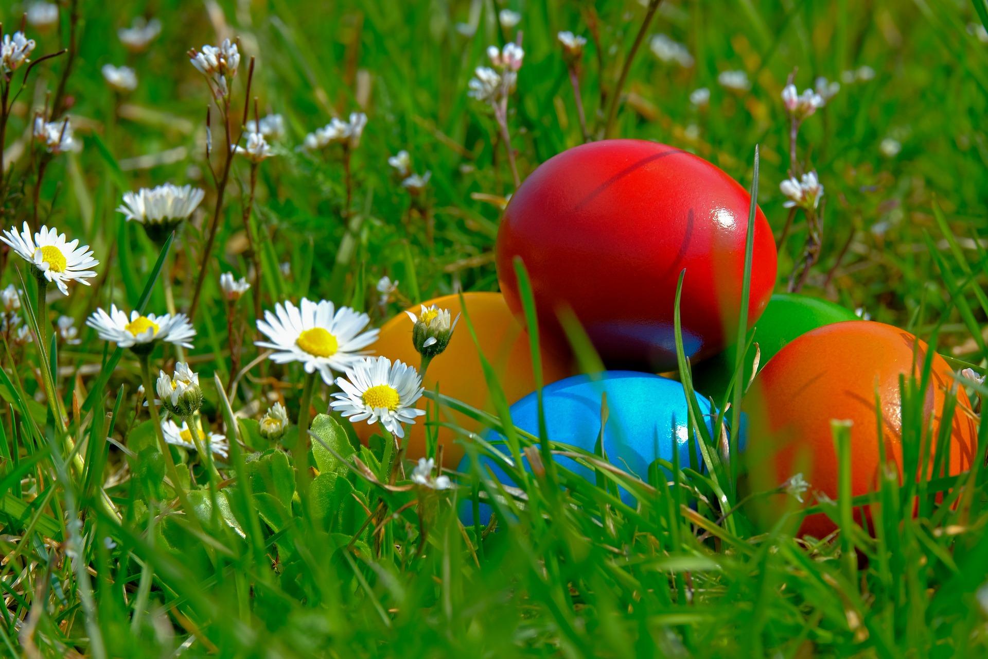 pote'Agé + chasse aux œufs
