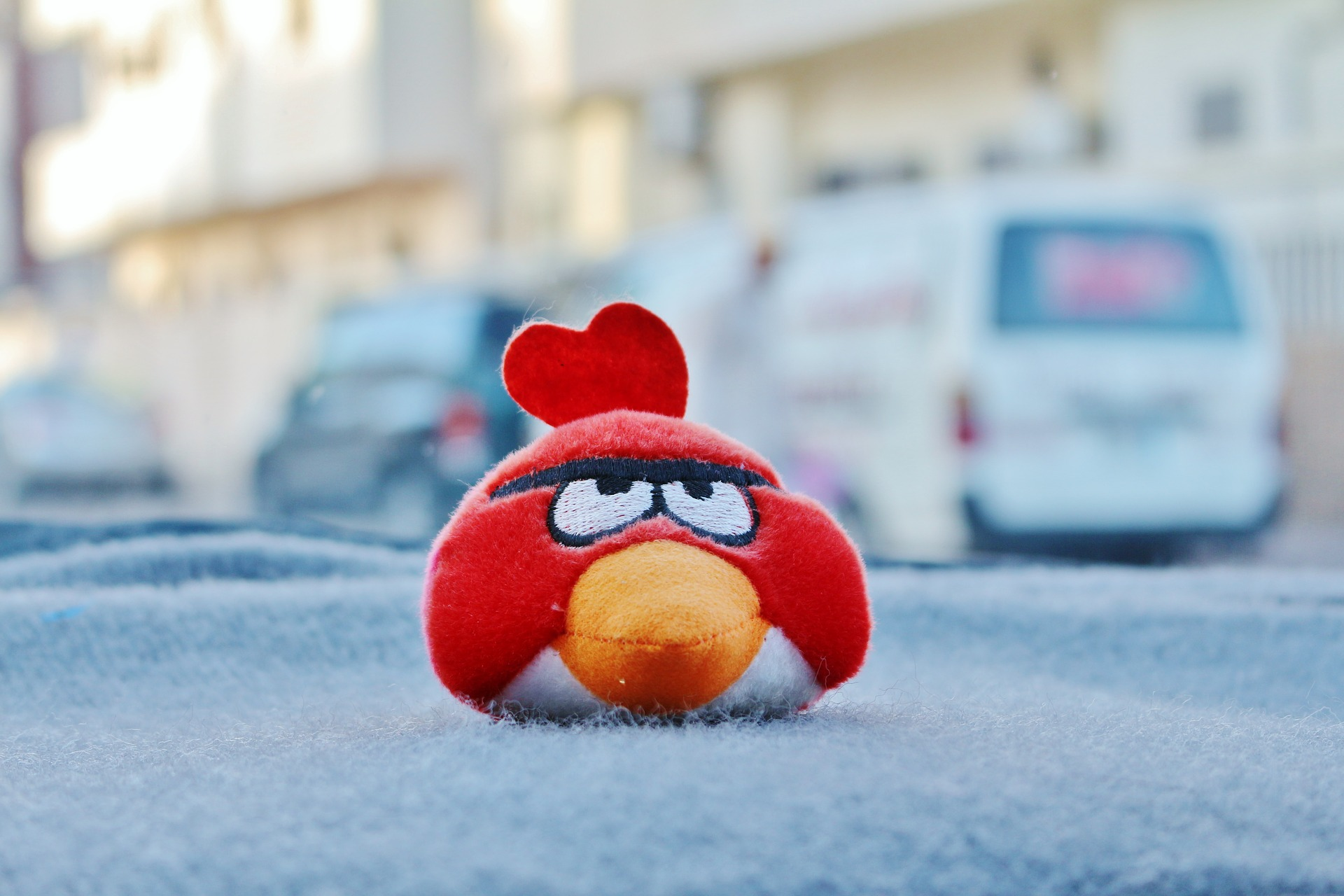 6/10 ans : Angry bird/ foret tropical