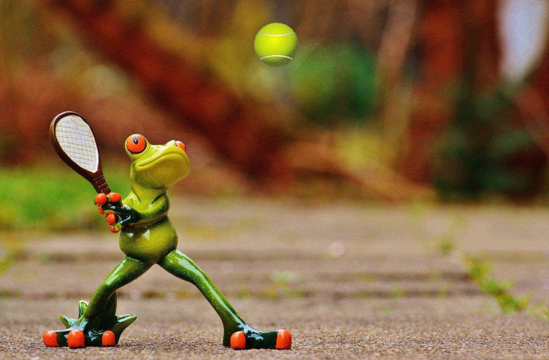 6/10 ans : - Jeux de raquettes / Jeux de pieds
